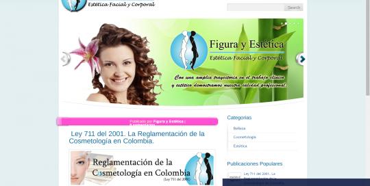 Diseño Web para el SPA Figura y Estética de Bogotá